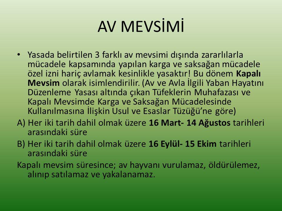 AV MEVSİMİ