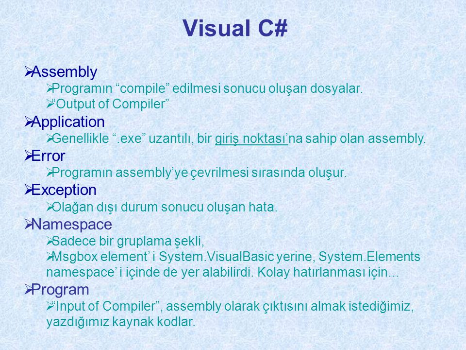 Visual C# Assembly Application Error Exception Namespace Program