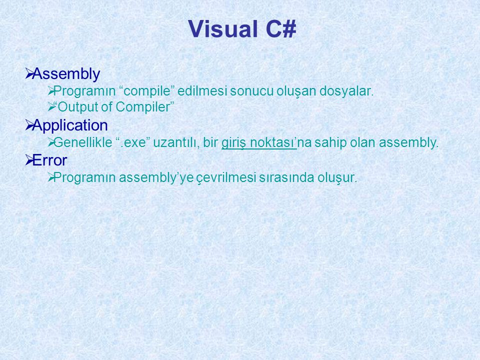 Visual C# Assembly Application Error