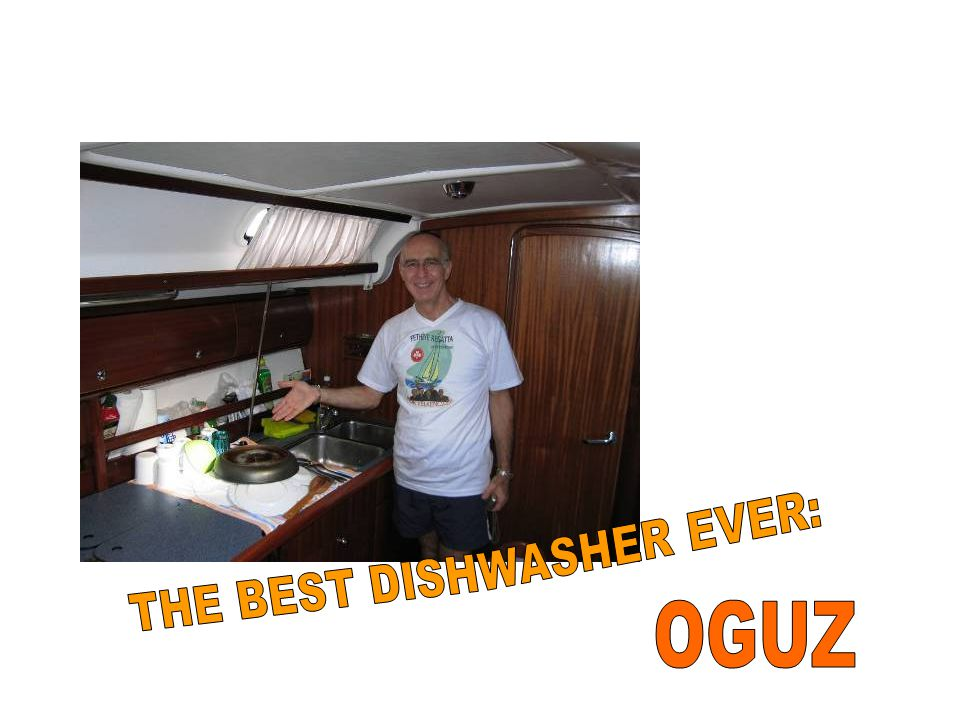 THE BEST DISHWASHER EVER: