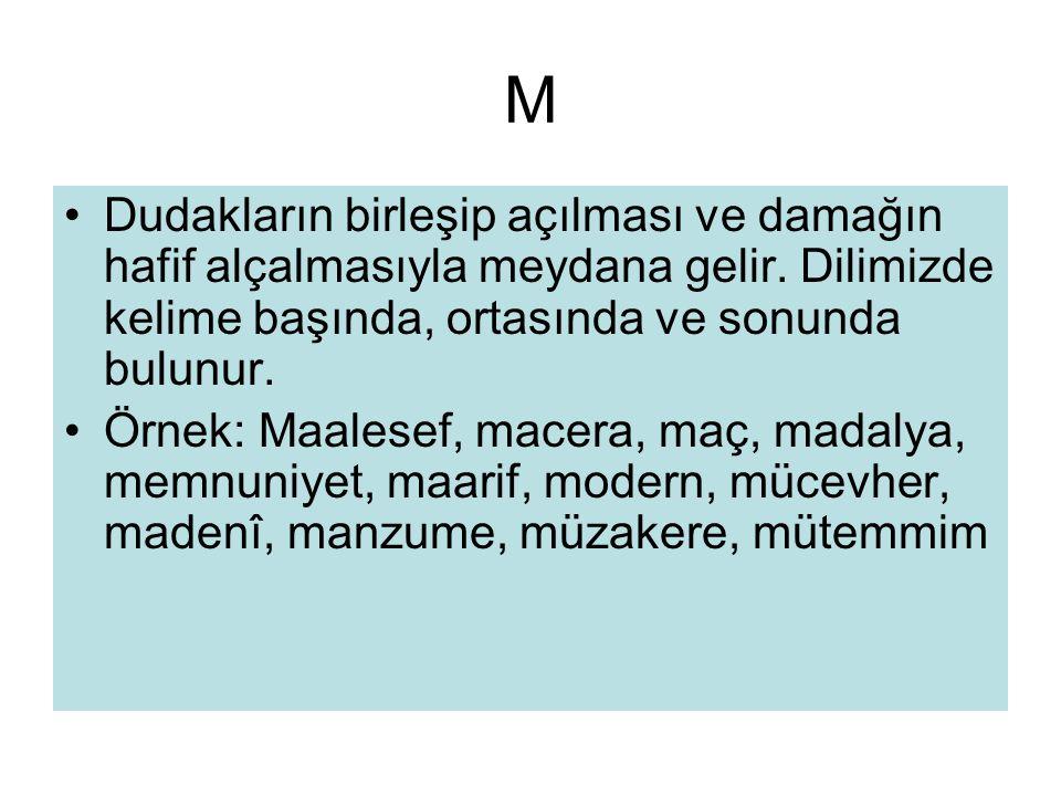 M Dudakların birleşip açılması ve damağın hafif alçalmasıyla meydana gelir. Dilimizde kelime başında, ortasında ve sonunda bulunur.