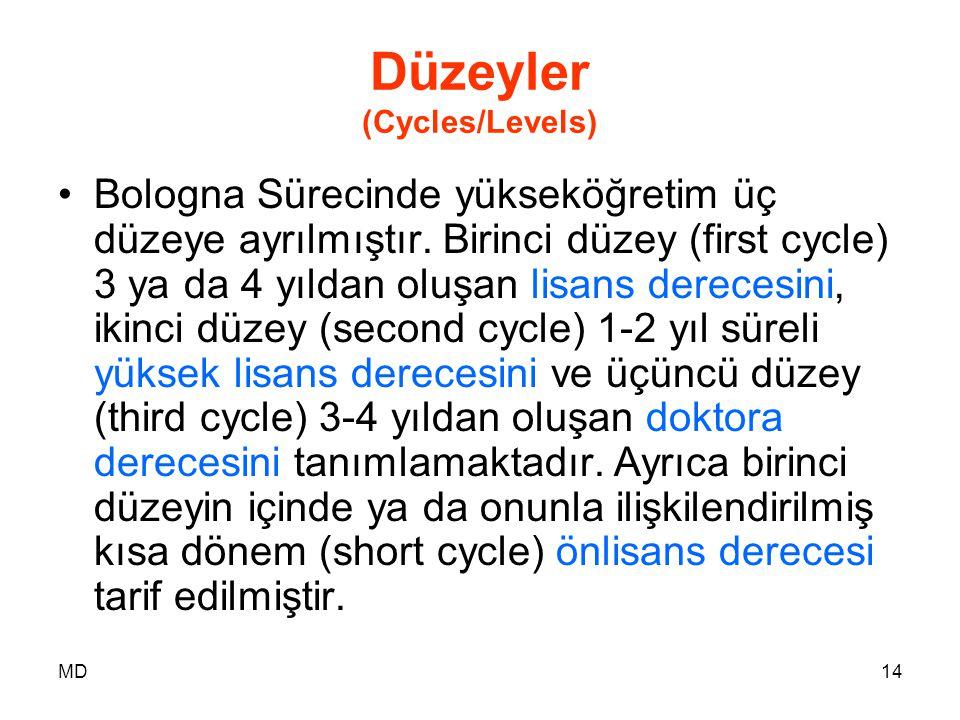 Düzeyler (Cycles/Levels)