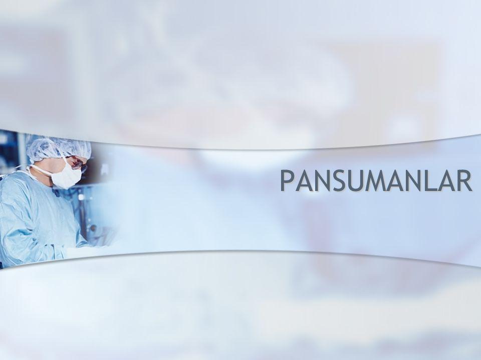 PANSUMANLAR