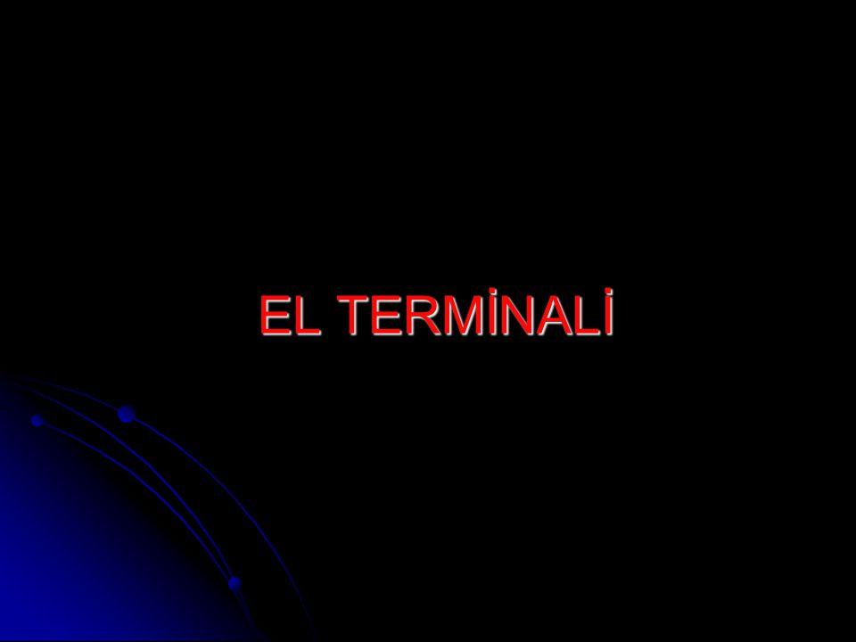 EL TERMİNALİ