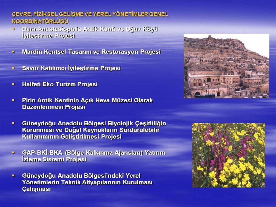 Dara-Anastasiopolis Antik Kenti ve Oğuz Köyü İyileştirme Projesi