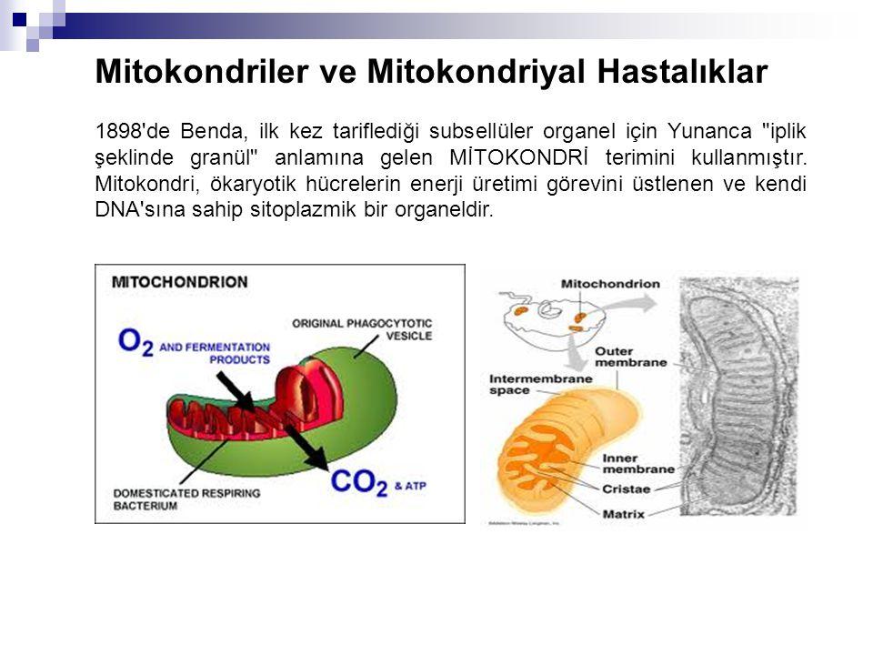 Mitokondriler ve Mitokondriyal Hastalıklar