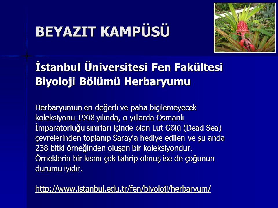BEYAZIT KAMPÜSÜ İstanbul Üniversitesi Fen Fakültesi