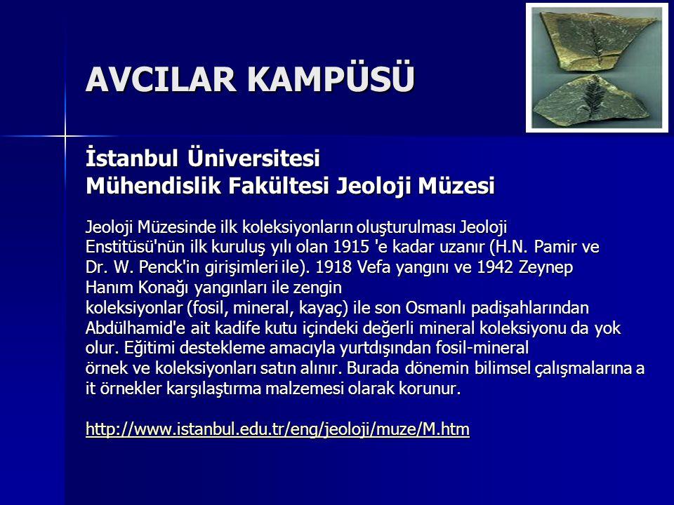 AVCILAR KAMPÜSÜ İstanbul Üniversitesi