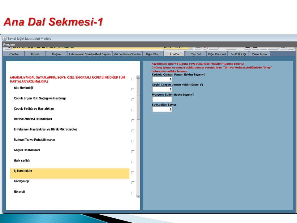 Ana Dal Sekmesi-1