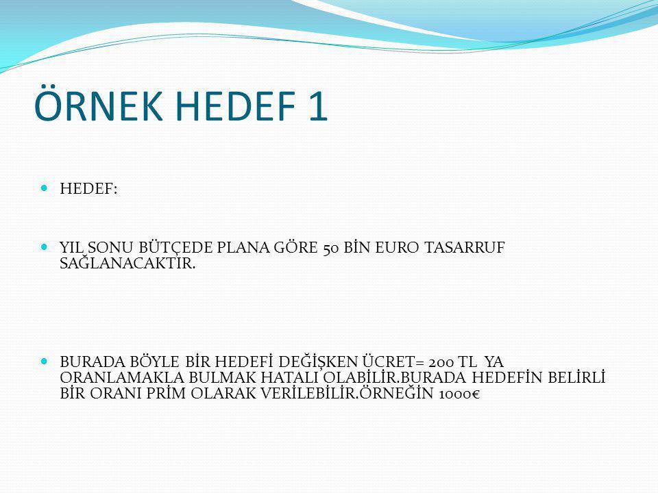 ÖRNEK HEDEF 1 HEDEF: YIL SONU BÜTÇEDE PLANA GÖRE 50 BİN EURO TASARRUF SAĞLANACAKTIR.