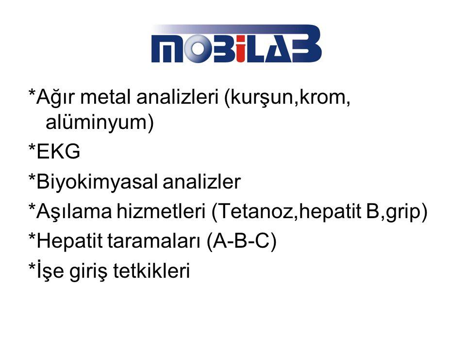 *Ağır metal analizleri (kurşun,krom, alüminyum)