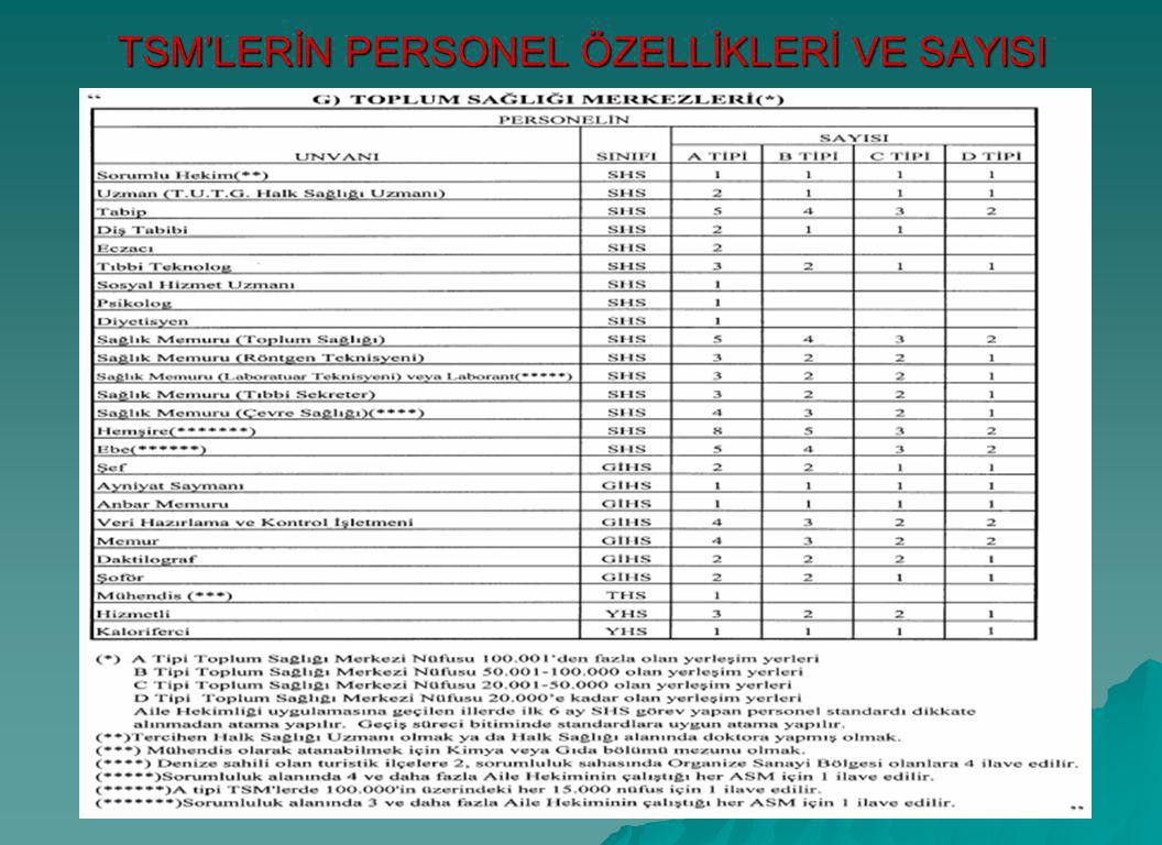 TSM'LERİN PERSONEL ÖZELLİKLERİ VE SAYISI