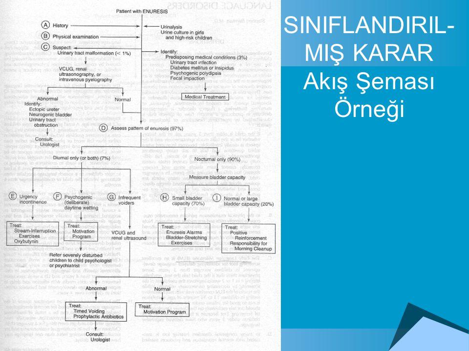 SINIFLANDIRIL-MIŞ KARAR Akış Şeması Örneği