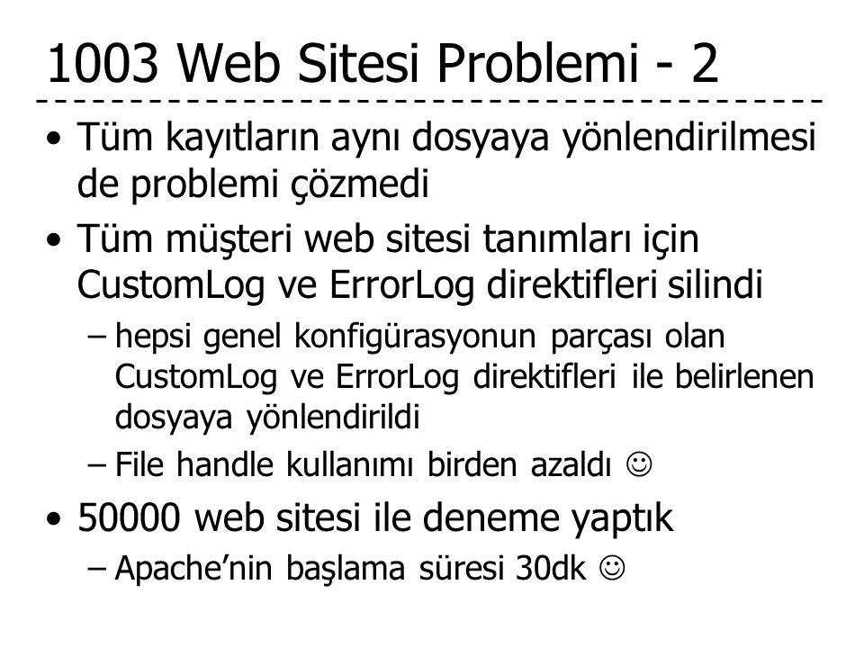 1003 Web Sitesi Problemi - 2 Tüm kayıtların aynı dosyaya yönlendirilmesi de problemi çözmedi.