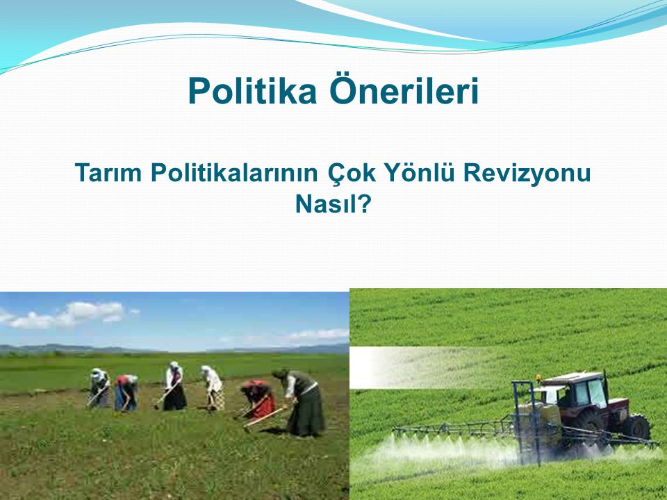Politika Önerileri Tarım Politikalarının Çok Yönlü Revizyonu Nasıl