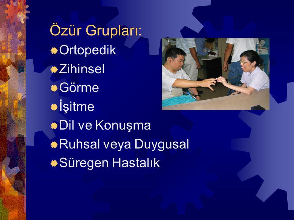 Özür Grupları: Ortopedik Zihinsel Görme İşitme Dil ve Konuşma