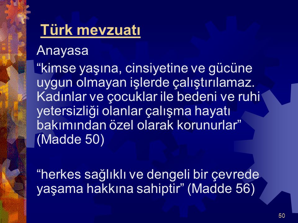 Türk mevzuatı Anayasa.