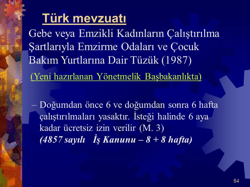 Türk mevzuatı Gebe veya Emzikli Kadınların Çalıştırılma Şartlarıyla Emzirme Odaları ve Çocuk Bakım Yurtlarına Dair Tüzük (1987)