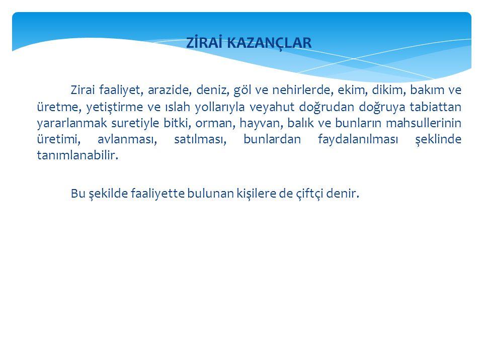 ZİRAİ KAZANÇLAR