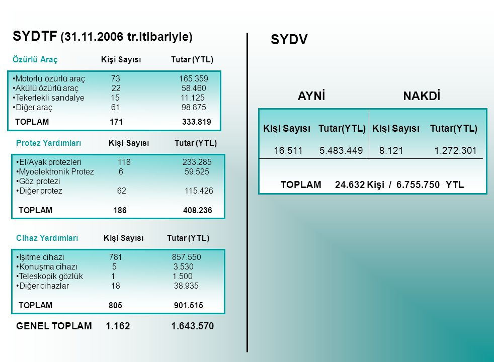 SYDTF (31.11.2006 tr.itibariyle) SYDV AYNİ NAKDİ