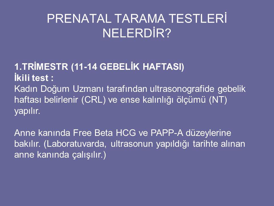 PRENATAL TARAMA TESTLERİ NELERDİR