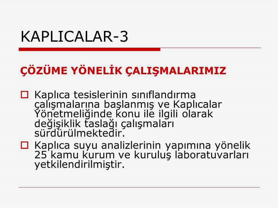 KAPLICALAR-3 ÇÖZÜME YÖNELİK ÇALIŞMALARIMIZ