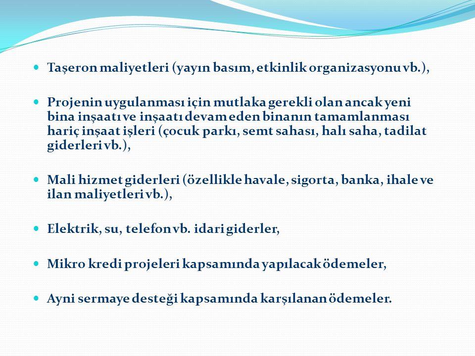 Taşeron maliyetleri (yayın basım, etkinlik organizasyonu vb.),