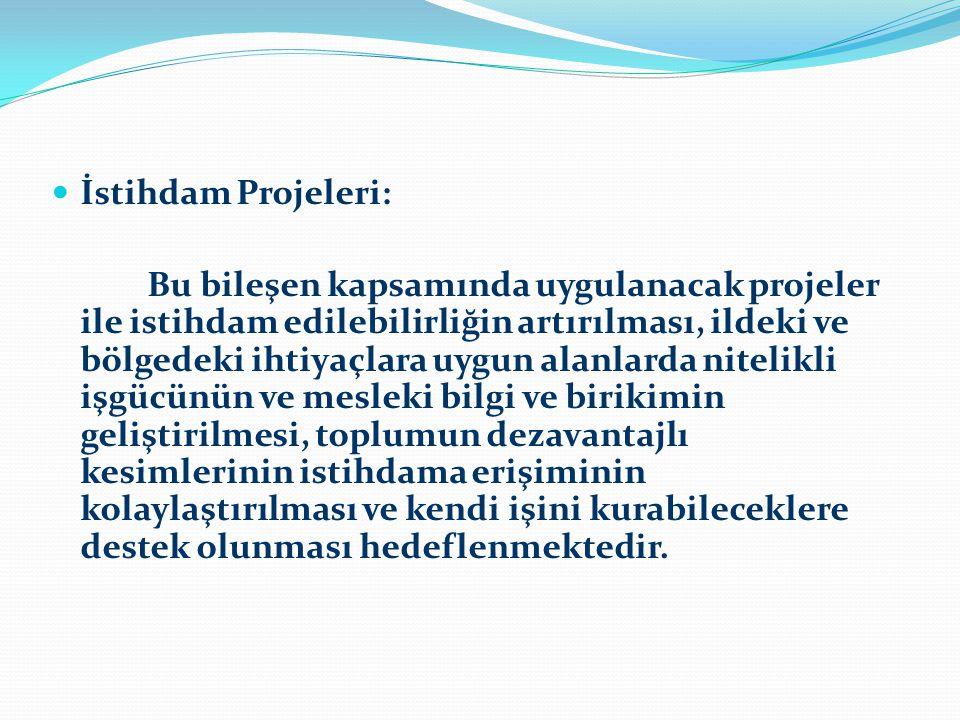 İstihdam Projeleri:
