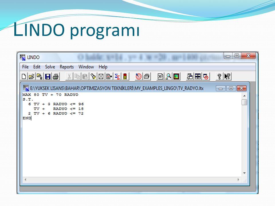 LINDO programı