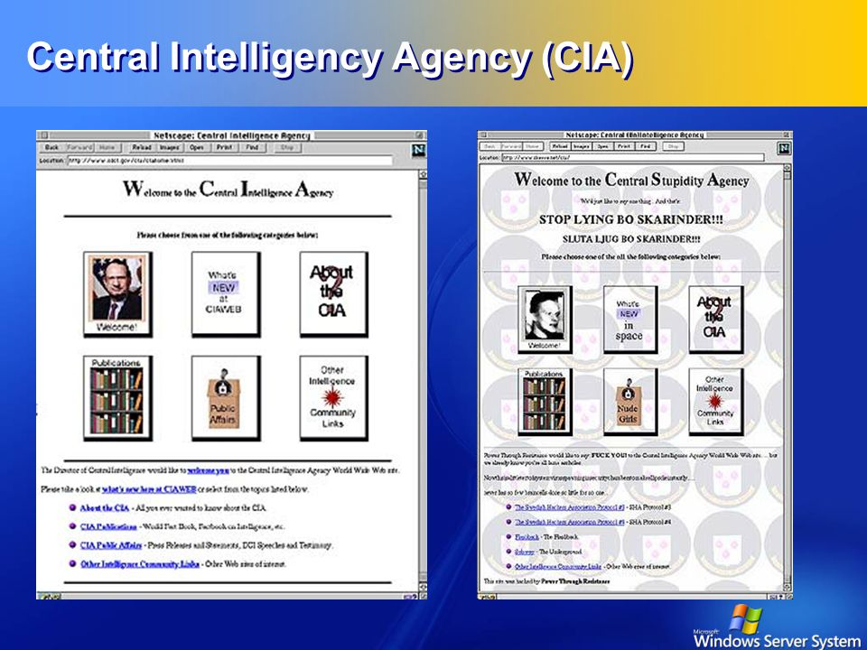 Central Intelligency Agency (CIA)