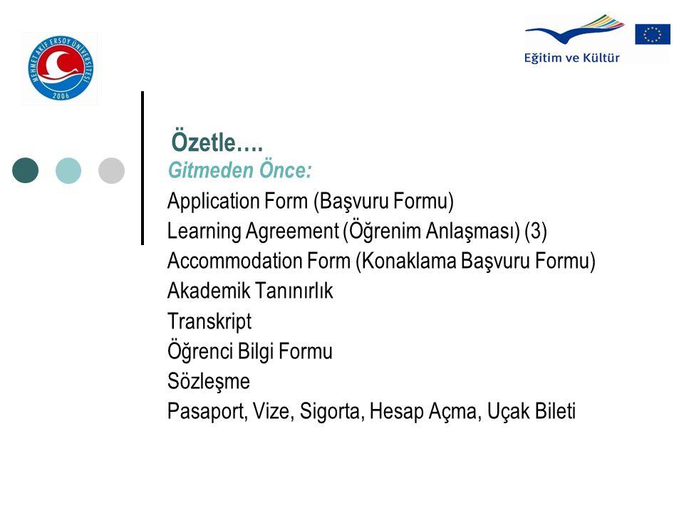 Özetle…. Gitmeden Önce: Application Form (Başvuru Formu)
