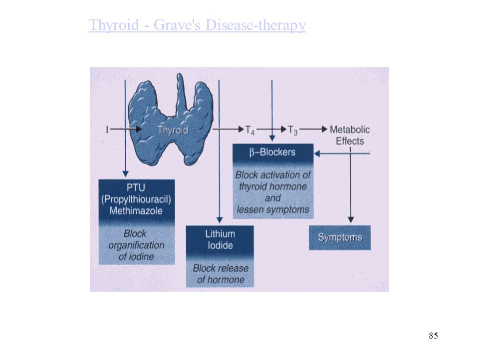 Thyroid - Grave s Disease-therapy