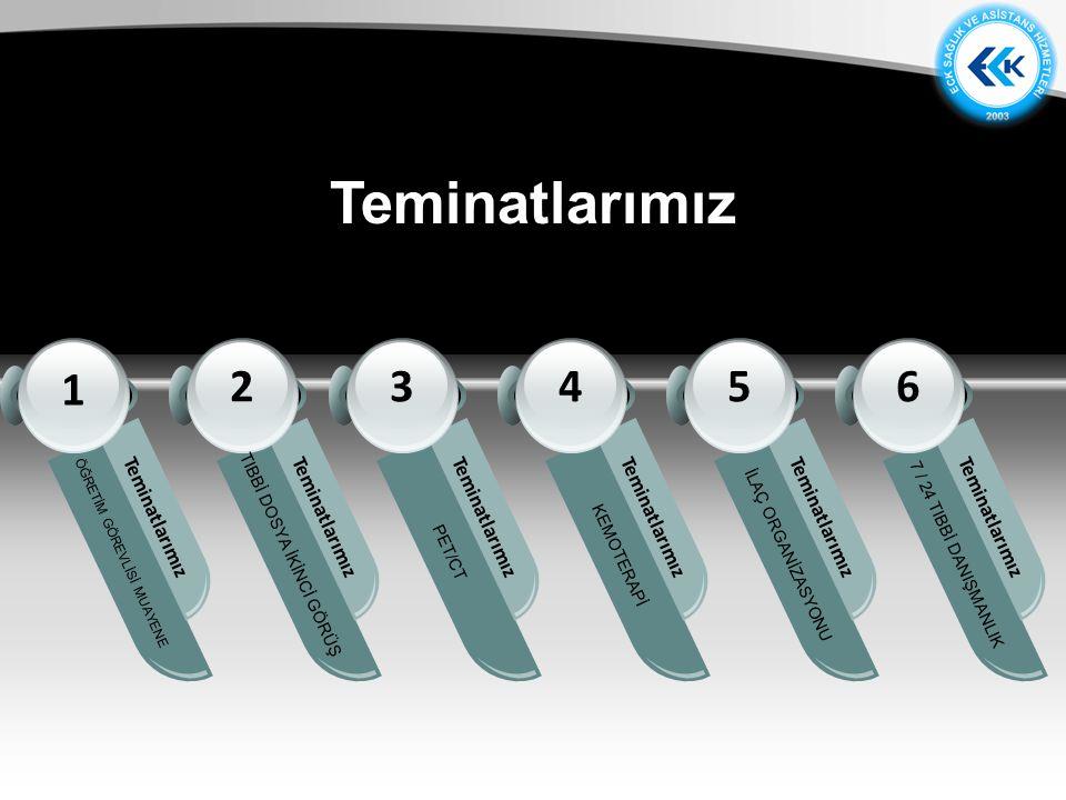 Teminatlarımız Diagram 1 2 3 4 5 6 Teminatlarımız Teminatlarımız
