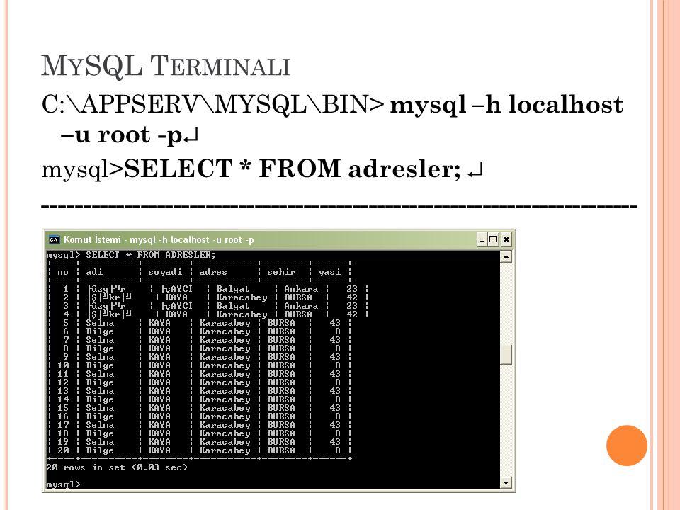 MySQL Terminali