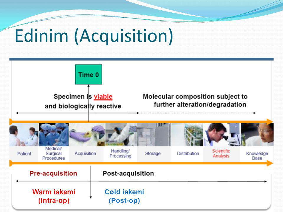 Edinim (Acquisition) Warm iskemi (Intra-op) Cold iskemi (Post-op)