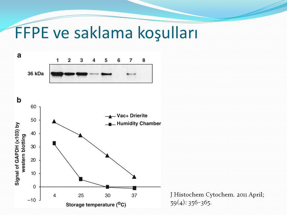 FFPE ve saklama koşulları