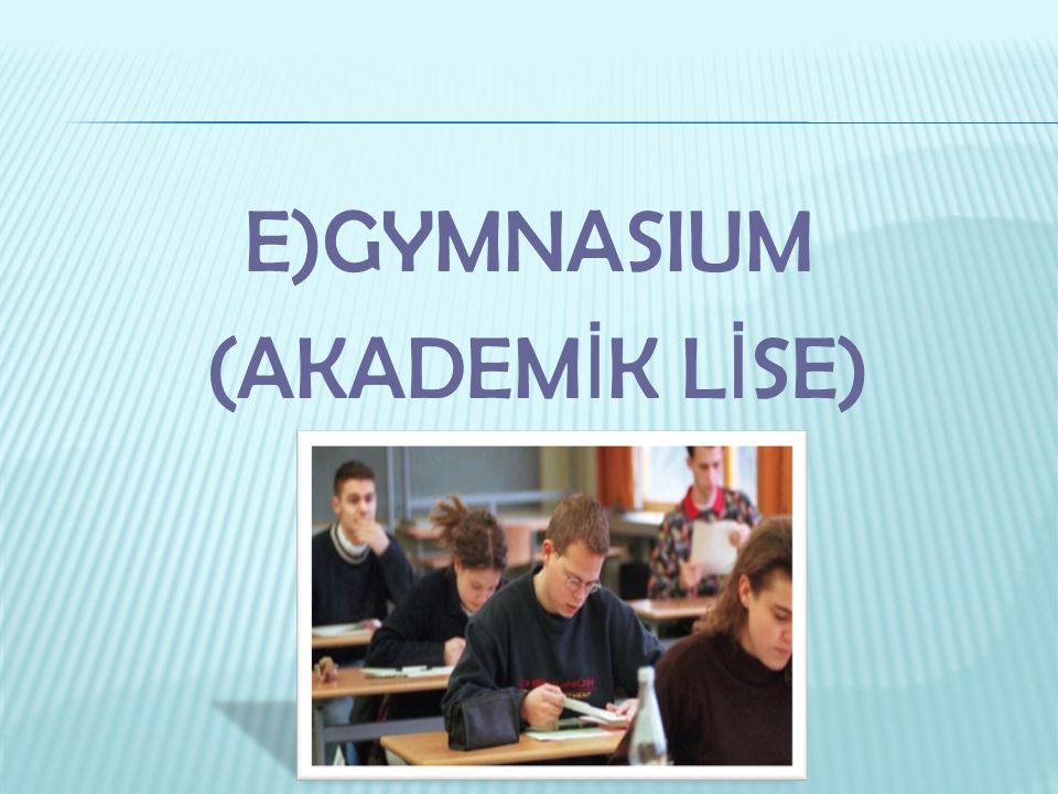E)GYMNASIUM (AKADEMİK LİSE)