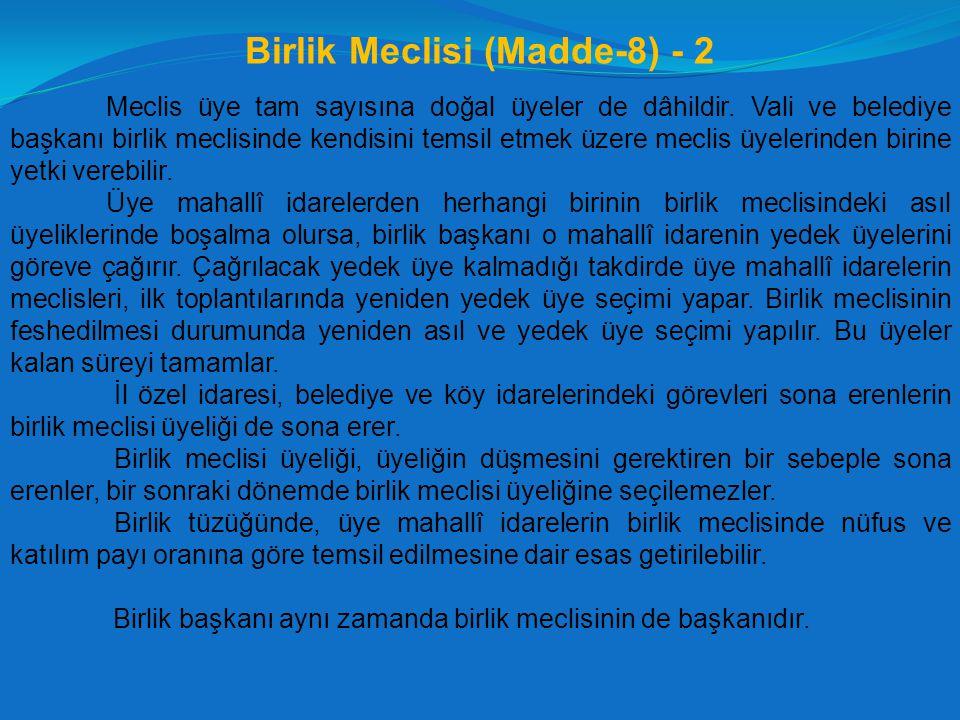 Birlik Meclisi (Madde-8) - 2