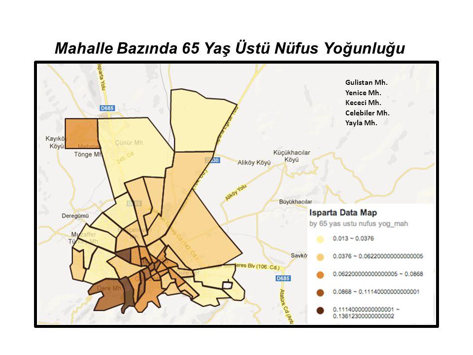 Mahalle Bazında 65 Yaş Üstü Nüfus Yoğunluğu