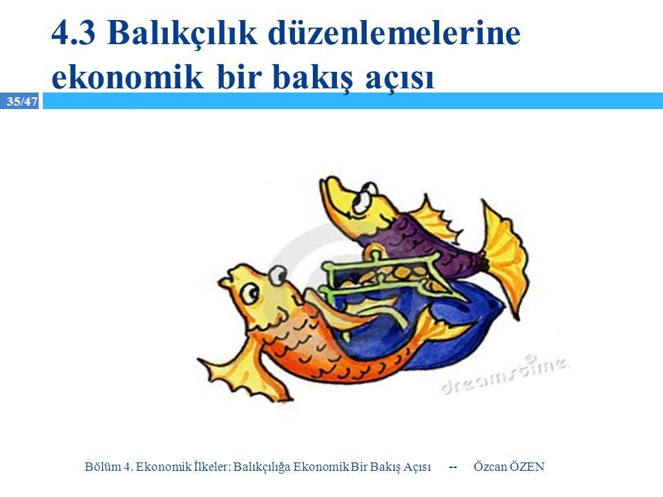4.3 Balıkçılık düzenlemelerine ekonomik bir bakış açısı