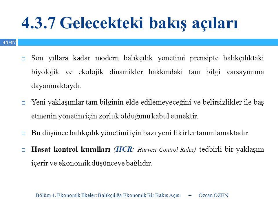 4.3.7 Gelecekteki bakış açıları