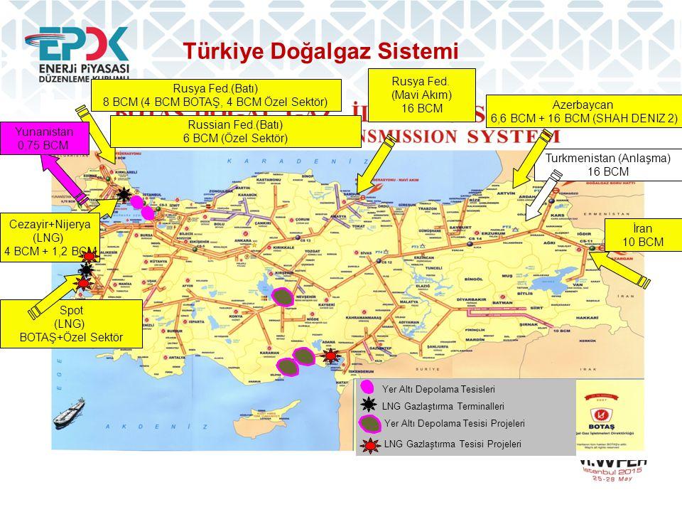 Türkiye Doğalgaz Sistemi