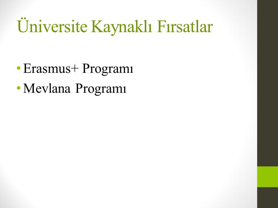 Üniversite Kaynaklı Fırsatlar