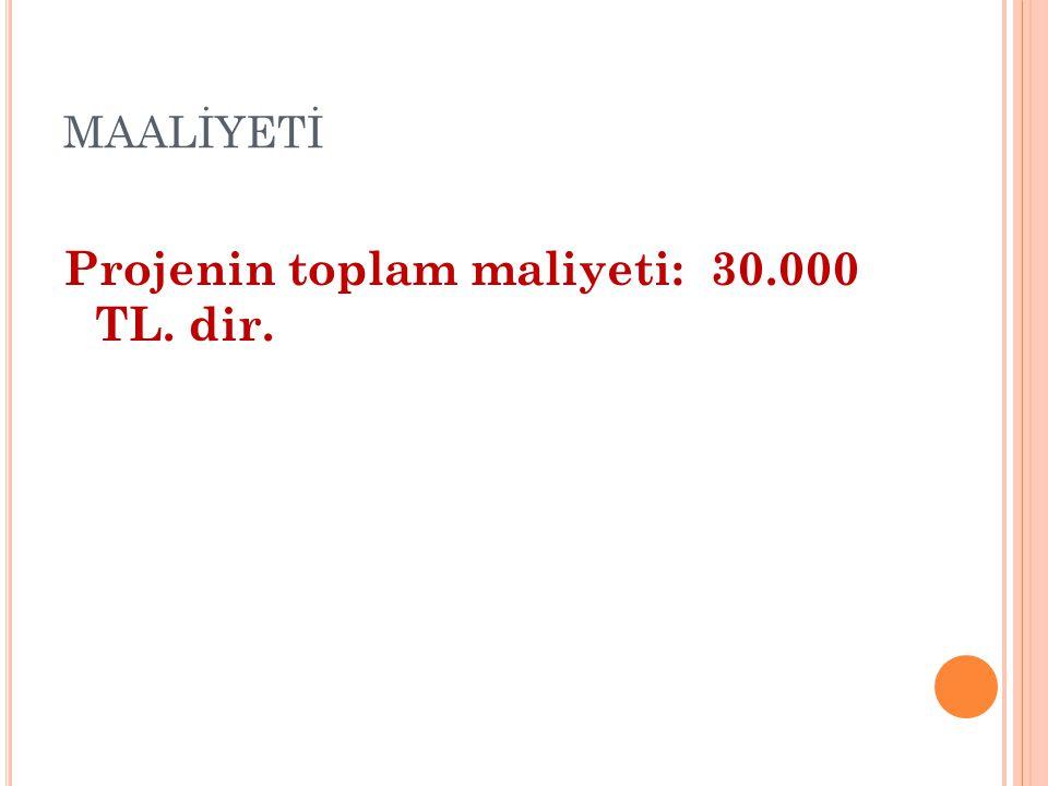 Projenin toplam maliyeti: 30.000 TL. dir.