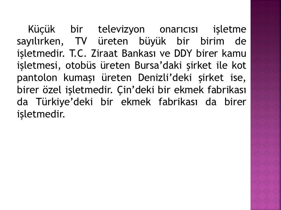 Küçük bir televizyon onarıcısı işletme sayılırken, TV üreten büyük bir birim de işletmedir.