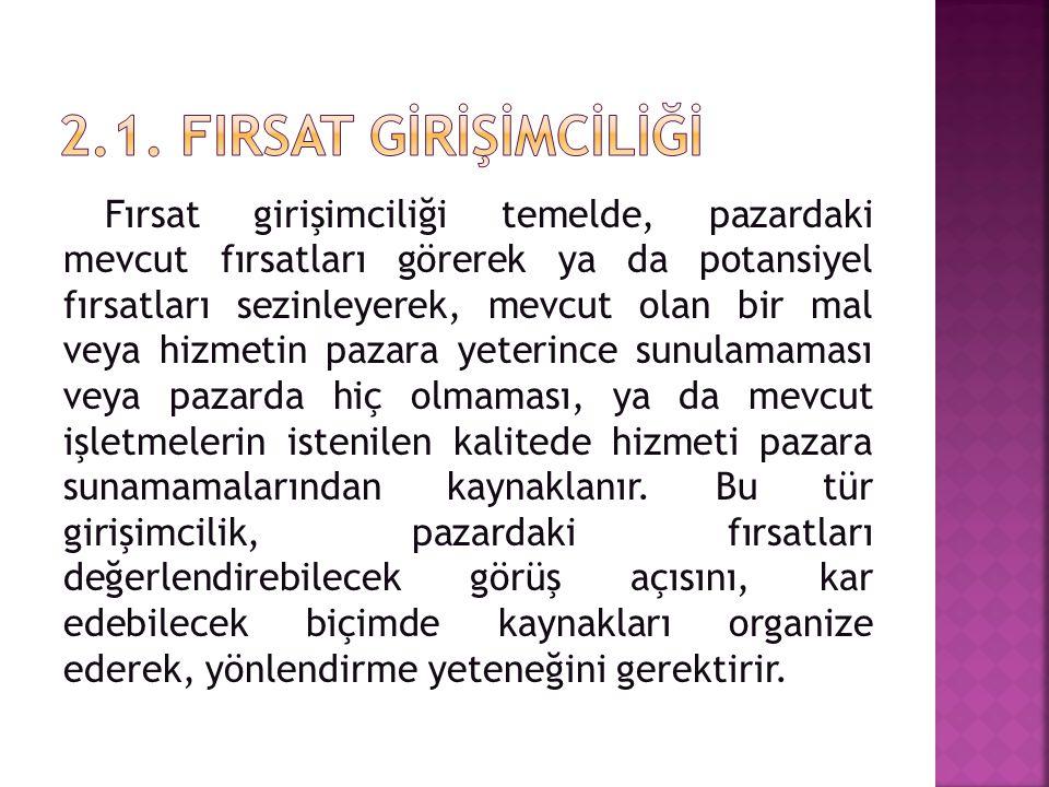 2.1. FIrsat GİRİŞİMCİLİĞİ
