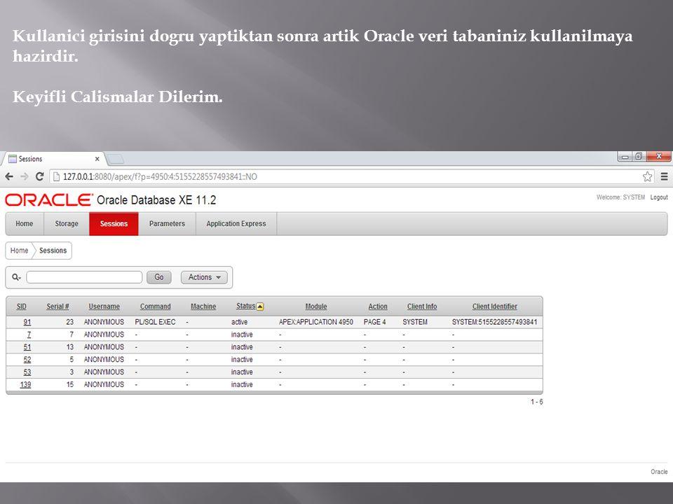 Kullanici girisini dogru yaptiktan sonra artik Oracle veri tabaniniz kullanilmaya hazirdir.