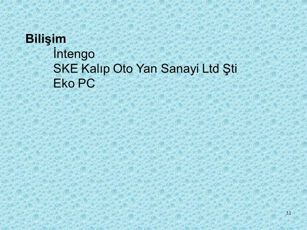 Bilişim İntengo SKE Kalıp Oto Yan Sanayi Ltd Şti Eko PC
