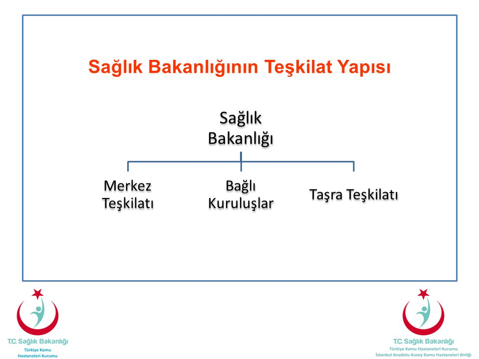Sağlık Bakanlığının Teşkilat Yapısı