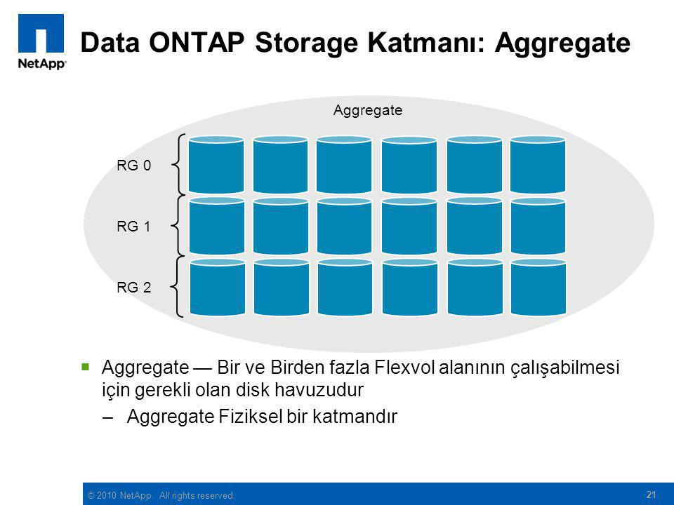 Data ONTAP Storage Katmanı: Aggregate